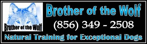 Brother of the Wolf Banner Horz.