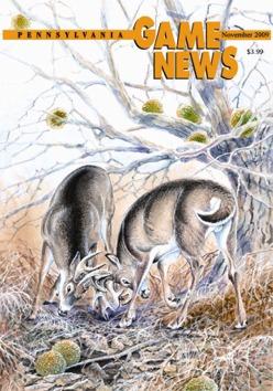 GameNews_Cover_November_Large