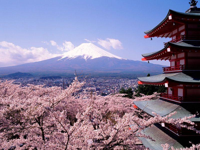 Fuji-Japan-Cherry-Blossoms-and-Mount-1-2TELRXMJHD-1600x1200