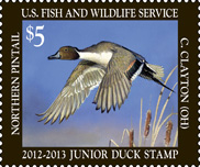 2012-13_jr_duck_stamp