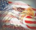 Eagle-bgimage-2