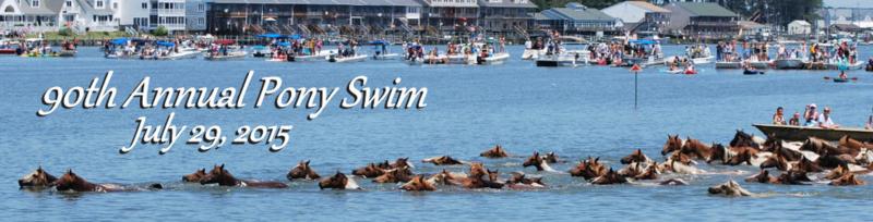 Ponyswim-90