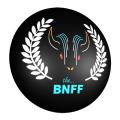 2017-BNIFF-sm-logo