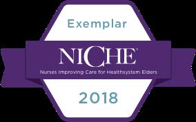 2018 NICHE Exemplar Button
