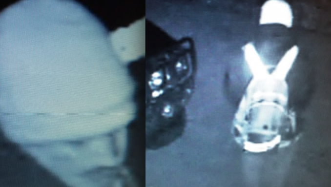 Car-burglaries-9b7ad9c1a366ea3c
