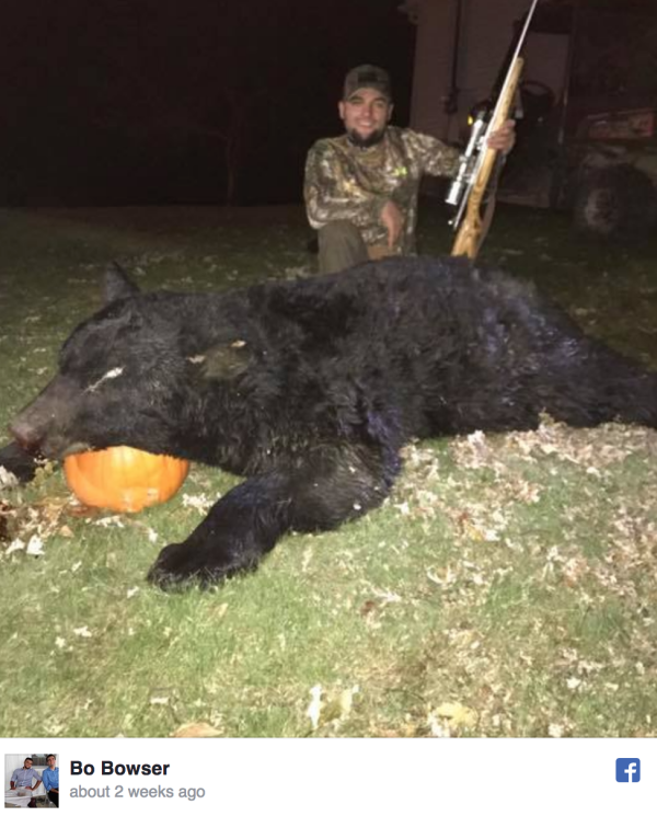 Cnb Hunting Fishing Pa Preliminary State Bear Harvest
