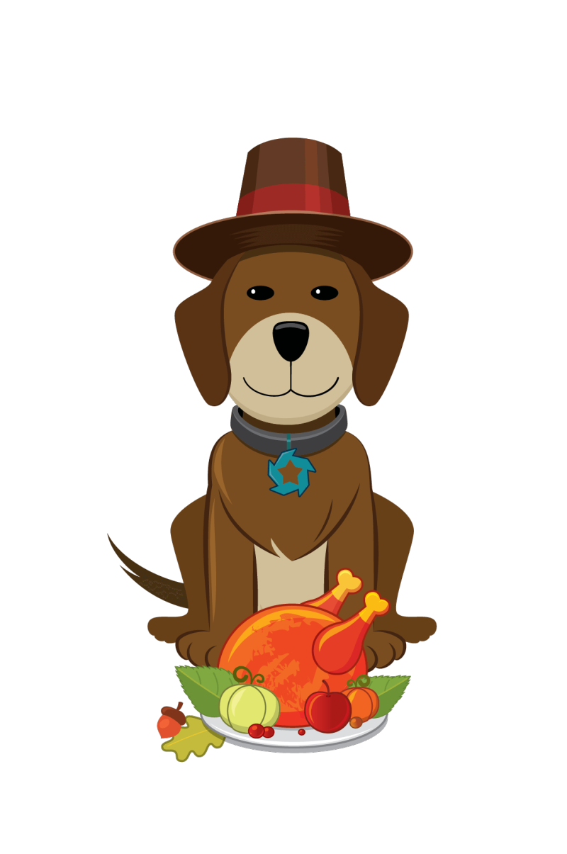 Image31_Thanksgiving-Day-Dog