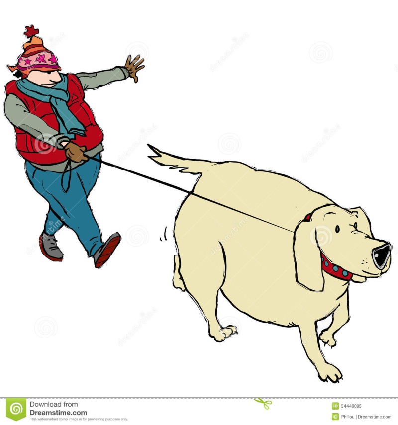 Walking-fat-dog-man-hat-34449095