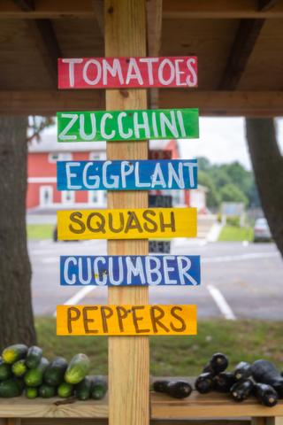 7-23 Vegetable Sign Vertical CU