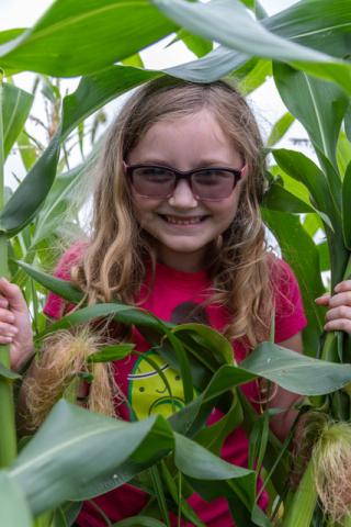 7-17 Evan of the Corn 1