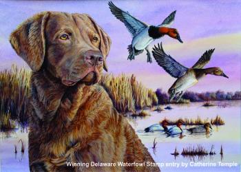 2017-Delaware-waterfowl-stamp-contest-winner